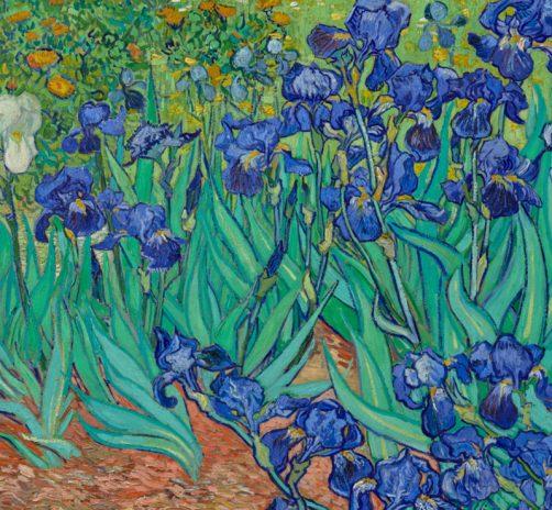 Irises-(1889)